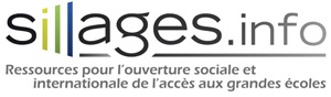 logo baseline sillages